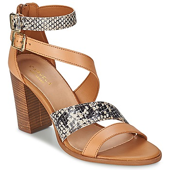 Chaussures Femme Sandales et Nu-pieds Carvela KISSY Marron