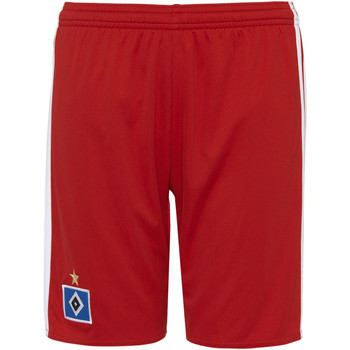 Vêtements Enfant Shorts / Bermudas adidas Performance Short Hambourg SV Domicile Replica Rouge / Blanc