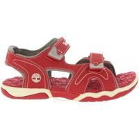Chaussures Enfant Sandales et Nu-pieds Timberland A1OAT ADVENTURE Rojo
