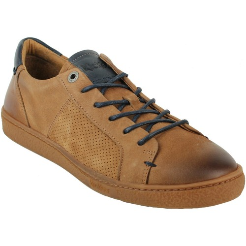 Homme Kickers Baskets Chaussures Camel Sneakers Marron fwdwq8