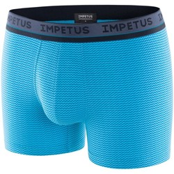 Vêtements Homme Boxers / Caleçons Impetus Boxer Homme Modal VENICE Bleu bleu