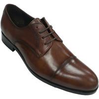 Chaussures Homme Derbies Tolino Homme classique robe de chaussure avec d marrón