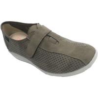 Chaussures Femme Slip ons Doctor Cutillas Des chaussures pour dames qui simulent l beige