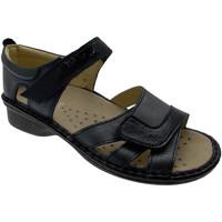 Chaussures Femme Sandales et Nu-pieds Calzaturificio Loren LOM2524bl blu