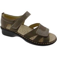 Chaussures Femme Sandales et Nu-pieds Loren LOM2524to tortora