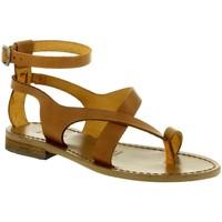 Chaussures Femme Sandales et Nu-pieds Iota 584 marron