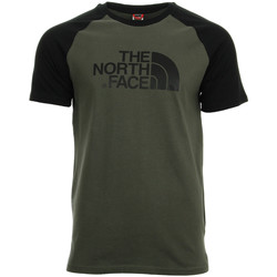 Vêtements Homme T-shirts manches courtes The North Face Raglan Easy Tee vert