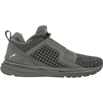 Chaussures Homme Baskets basses Puma Ignite Limitless Knit Gris