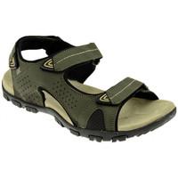 Chaussures Femme Sandales et Nu-pieds Lumberjack PALMER Sandales