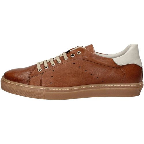 Calpierre 437 Sneakers Homme Marron - Chaussures Baskets basses Homme