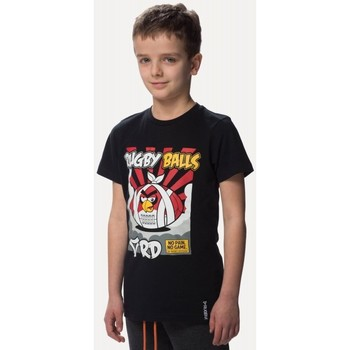 Vêtements Enfant T-shirts manches courtes Rugby Division Tee-shirt - Rugby Balls - Noir