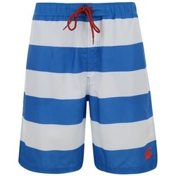 Vêtements Shorts / Bermudas Canterbury Maillot de bain - Striped boar Blanc