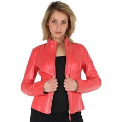 Vêtements Femme Blousons Akhesa Veste en cuir  ref_pst43226 Fushia rose