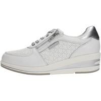 Chaussures Femme Baskets basses Valleverde 17144 Sneakers Femme WHITE WHITE