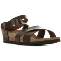 Chaussures Femme Sandales et Nu-pieds Papillio Lola marron