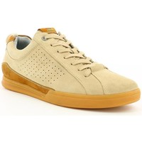 Chaussures Homme Baskets basses Kickers TAMPA Beige