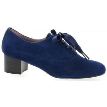 Chaussures Femme Richelieu Pao Derby cuir velours Bleu