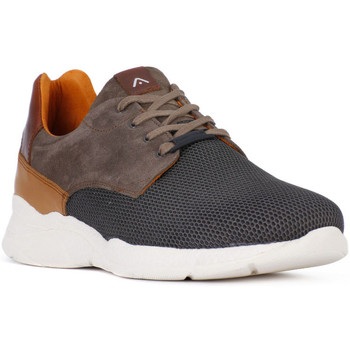 Chaussures Homme Baskets basses Ambitious AMBITIUS ALLACCIATA TAUPE Marrone