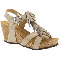 Chaussures Femme Sandales et Nu-pieds Coco & Abricot V0970A Taupe