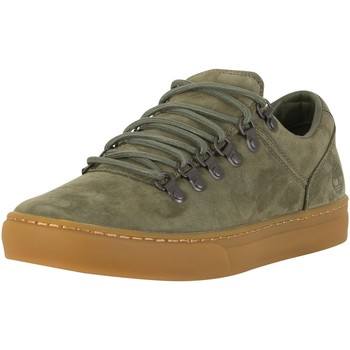 Chaussures Homme Baskets mode Timberland Homme Adventure 2.0 Cupsole Alpin Oxford Trainers, Vert vert