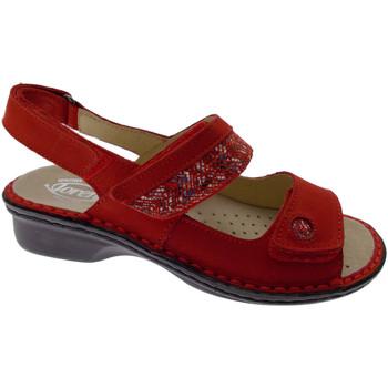 Chaussures Femme Sandales et Nu-pieds Loren LOM2716ro rosso