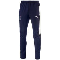 Vêtements Homme Pantalons de survêtement Puma Pantalon d'entraînement  FIGC Italia Stadium - 750749-03 Bleu