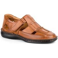Chaussures Homme Sandales et Nu-pieds Cactus Calzados  Marron