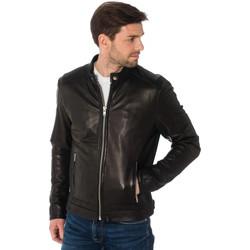 Vêtements Homme Blousons Cityzen BAYFIELD BLACK Noir