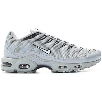 Chaussures Homme Baskets basses Nike Air Max Plus Gris