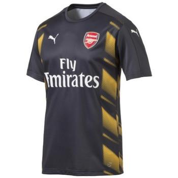 Vêtements Homme T-shirts manches courtes Puma Maillot d'entraînement  Arsenal FC 2016/2017 - 750734-02 Gris