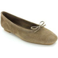 Chaussures Femme Ballerines / babies Reqins HARMONY Taupe