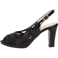 Chaussures Femme Sandales et Nu-pieds Musella 018510 NOIR