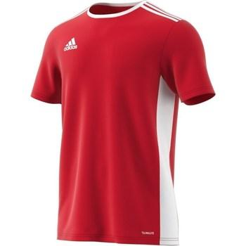 Vêtements Homme T-shirts manches courtes adidas Originals Entrada 18 Blanc,Rouge