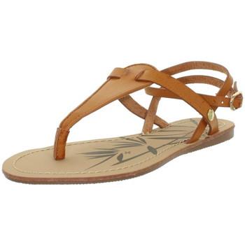 Chaussures Sandales et Nu-pieds Pepe jeans Sandales  ref_pep43371-879-cognac Marron