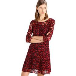 Vêtements Femme Robes courtes Liu Jo W67006 Rouge