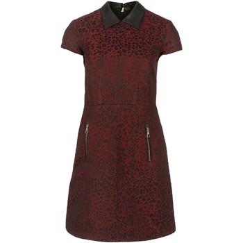 Vêtements Femme Robes courtes Set STYLE 59148 Bordeaux