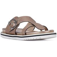 Chaussures Femme Sandales et Nu-pieds Elvio Zanon SANDALO CRACKEL Grigio