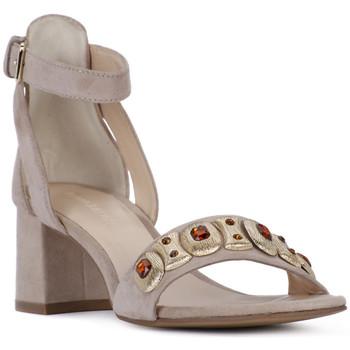Chaussures Femme Sandales et Nu-pieds Elvio Zanon SANDALO Rosa