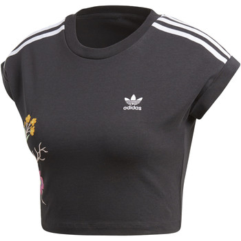 Vêtements Femme T-shirts manches courtes adidas Originals T-shirt Graphic Cropped Noir