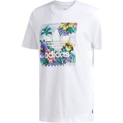 Vêtements Homme T-shirts manches courtes adidas Originals T-shirt BB Floral Blanc / Multicolore