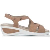 Chaussures Femme Sandales et Nu-pieds Arcopedico MAGESTIC NUBUCK TAN Sandalias