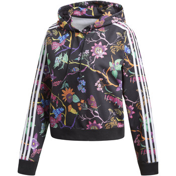 Vêtements Femme Vestes de survêtement adidas Originals Sweat-shirt à capuche Cropped Noir