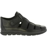 Chaussures Homme Sandales et Nu-pieds Timberland A1PEC BRADSTREET Negro