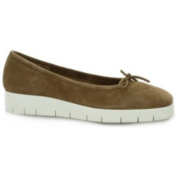 Chaussures Femme Ballerines / babies Reqins Ballerines cuir velours sable Sable