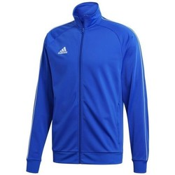 Vêtements Homme Sweats adidas Originals CORE18 Pes bleu