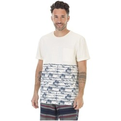 Vêtements Homme T-shirts & Polos Picture Organic Clothing Wellington Blanc