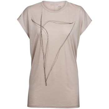 Vêtements Femme T-shirts & Polos Icebreaker W Aria Ss Tunic Blade Beige