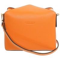 Sacs Femme Sacs Bandoulière Pourchet Sac Pochette porté travers  en cuir ref_po orange