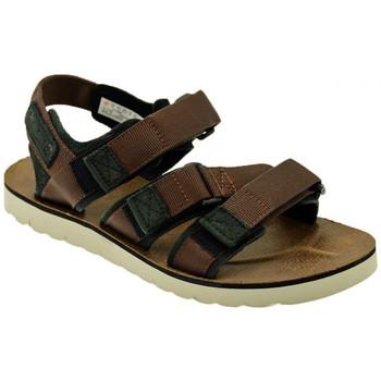 Chaussures Homme Sandales et Nu-pieds Timberland PIERCE POINT SANDAL BROWN Sandales