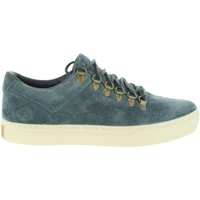 Chaussures Homme Baskets basses Timberland A1LI4 ADVENTURE Azul